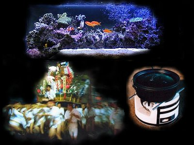 Please Click Here To Enter Director's Private Room
